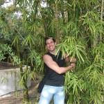 Bambus zagrljaj